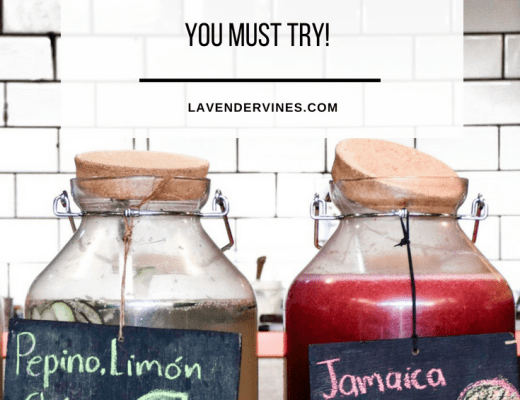 10 Mexican Non Alcoholic Drinks You Must Try!
