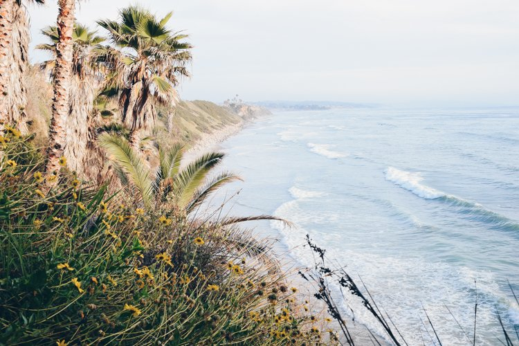 Swami's Beach - Best Beaches in San Diego
