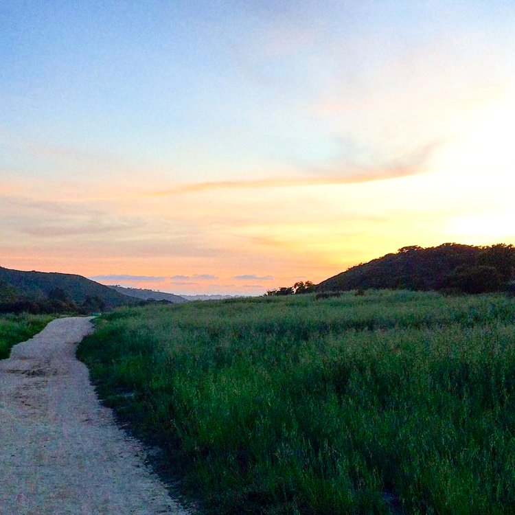 San Diego's Best Outdoor Adventures - Penasquitos Canyon Trail - Trail running in San Diego