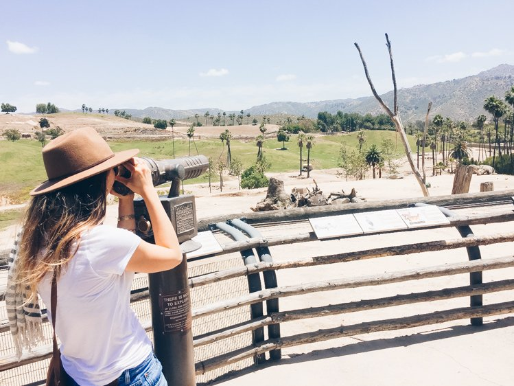 San Diego Bucket List - San Diego Zoo Safari Park