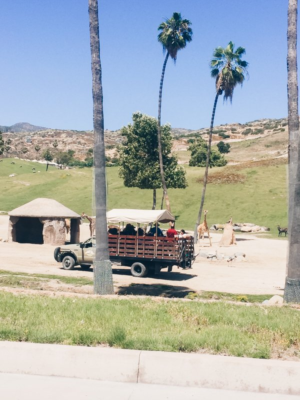 Caravan Safari - San Diego Zoo Safari Park