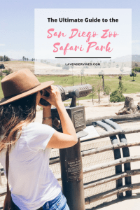 The Ultimate Guide to the San Diego Zoo Safari Park