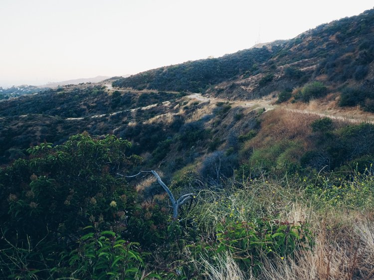 Brush Canyon Trail to the Hollywood Sign