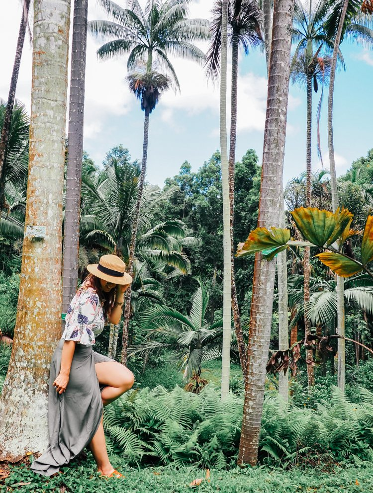 Hawaii Instagram Spots - Ho'omaluhia Botanical Garden