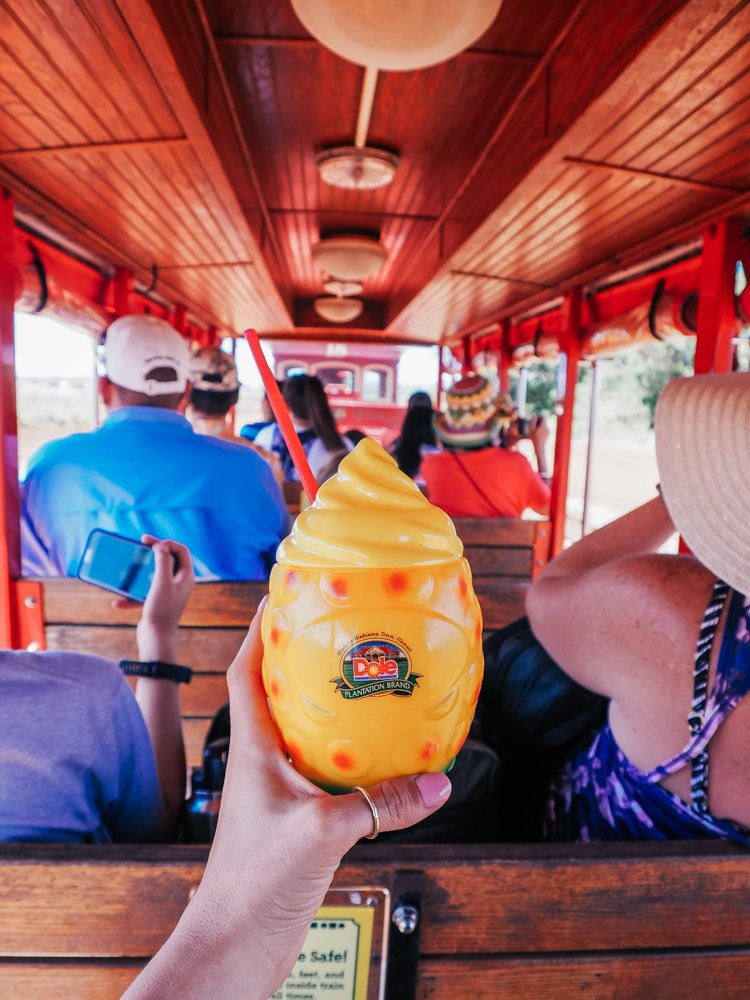 Things to do in Hawaii - The Dole Plantatio