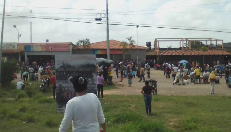 Nube de abejas hizo correr a usuarios del Banco de Venezuela de Las Cayenas