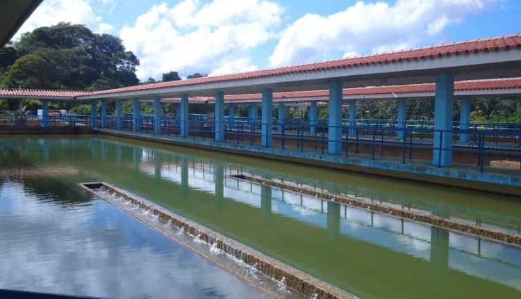 planta Bajo Guarapiche