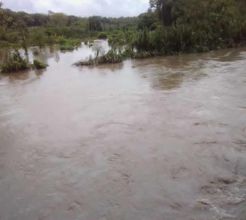 Más de 20 viviendas afectadas por desborde del río Carp en el municipio Bolívar