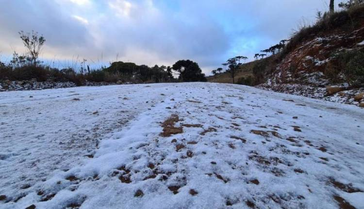 nevadas Brasil