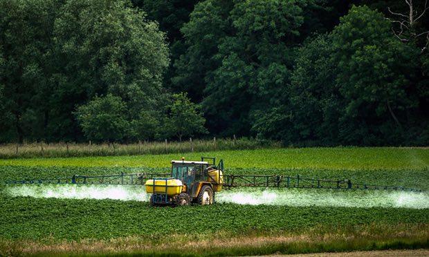 Ora l'ONU accusa i pesticidi: tossici e dannosi, possiamo farne a meno