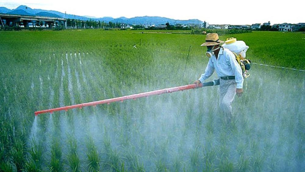 Ispra, trovati 259 pesticidi nelle acque italiane