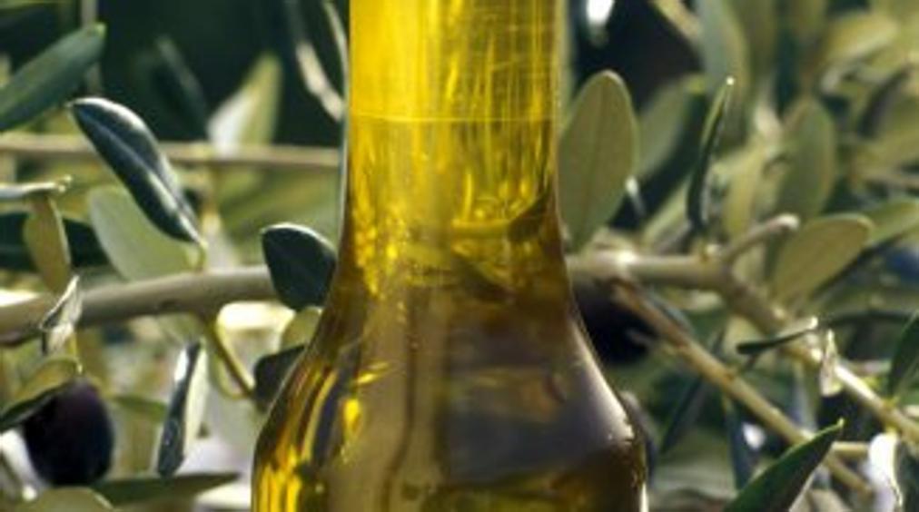Olio greco venduto come extravergine toscano: 31 indagati fra produttori e rivenditori