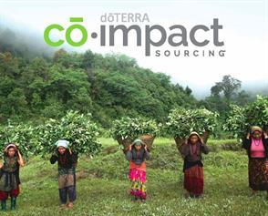 co-impact-sourcing-nepal wintergreen