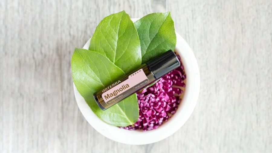 16x9-magnolia-uses-benefits-lifestyle-us-english-web