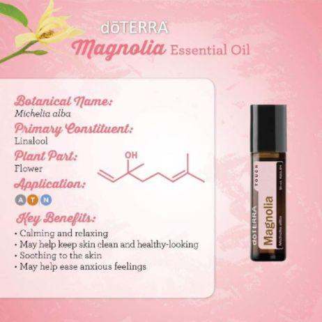 Magnolia doterra