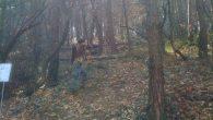 2012-03-11-battuta-fiarc-trescore_11