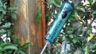 Cerca frecce1