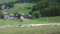 Tracciato_Presolana_2012_011