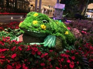 Super amazing floral frog in the atrium at the Belagio