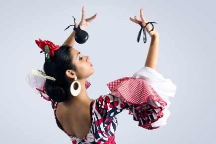flamenco-dancer-in-typical-posture