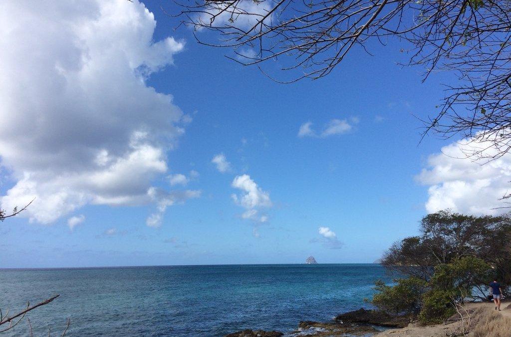 Un petit avant-goût de la Martinique… en attendant la suite !
