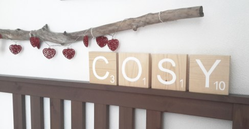 cosy-bois-brut-1