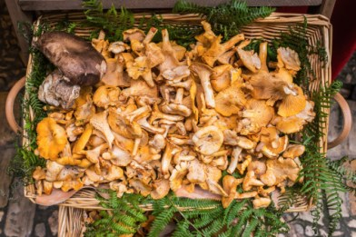 If the season is right, mushrooms are readily available at local markets.