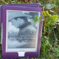 ¤ Chronique littéraire : Brokeback Mountain ¤