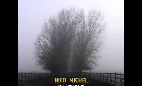 LaVitrola.cl: Nico Michel – Pájaros #LaVitrolaAraucanía