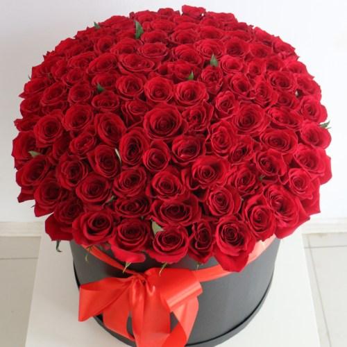 Уфа розы