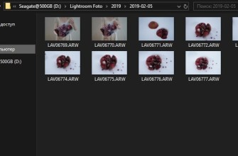 RAW preview thumbnails in Windows 10 Explorer
