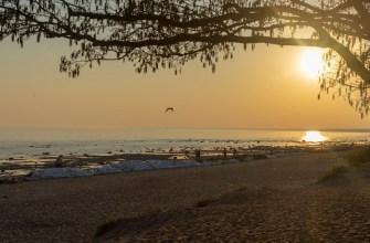 Три действенных способа заставить себя бегать по утрам