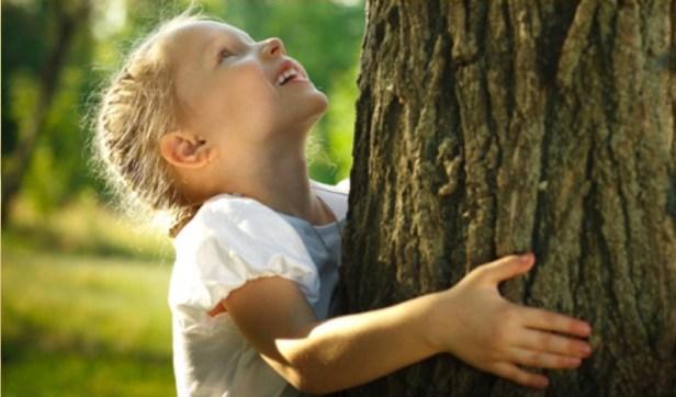 un-nuovo-albero-una-nuova-vita.jpg
