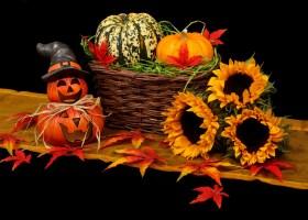Créer une jardinière «Halloween»
