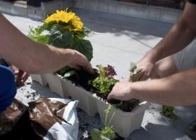 Jardinage et papotage