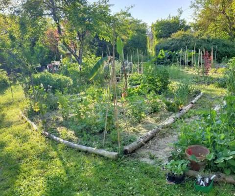 Permaculture au Jardin d'épices
