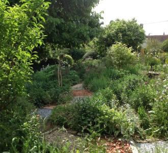 Création de jardin oasis