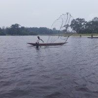 Les poissons du Lac Mai Ndombe