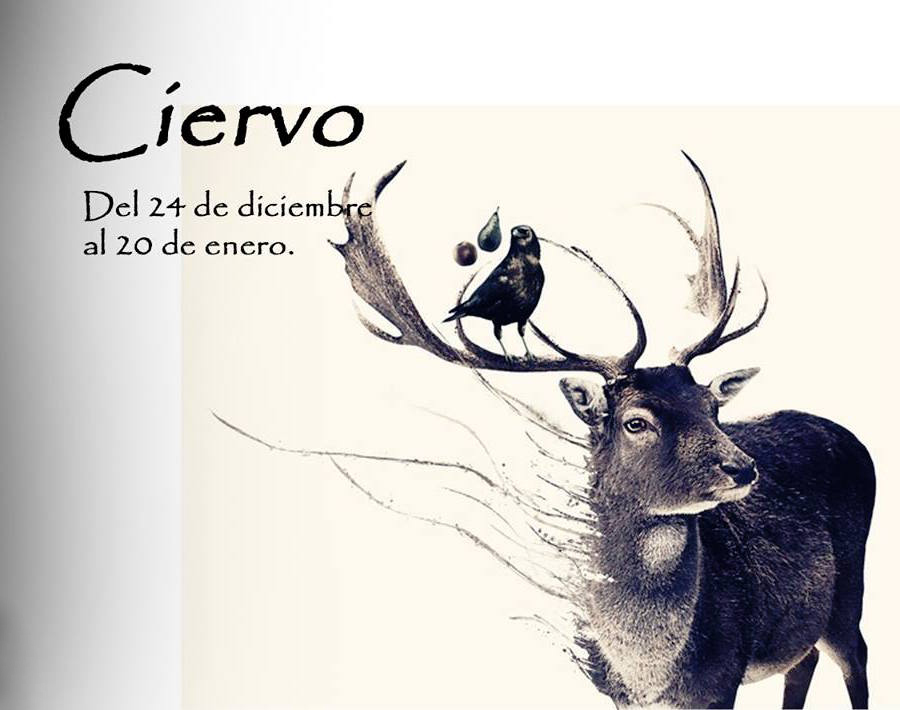 https://i1.wp.com/lavozdelmuro.net/wp-content/uploads/2015/10/horoscopo-celta-de-los-animales-1.jpg