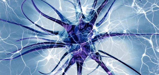 ¿Qué es la Medicina Neurolingüística»?