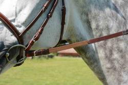 Les rênes élastiques : un contact moelleux à toutes épreuves !