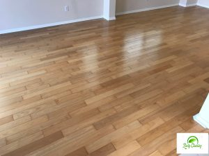 Carpet and Hardwood Floors Cleaning San Diego