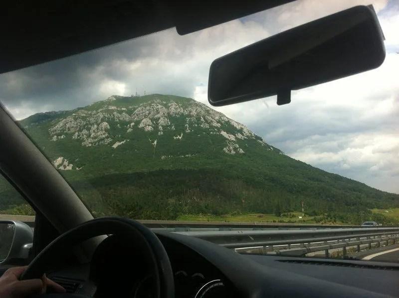 Vista del camino con el bosque parcialmente destruido