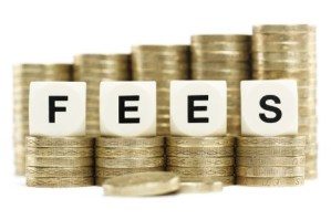 USCIS Filing Fees Update: Court Enjoins Fee Increases