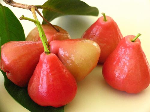 pomme malaca
