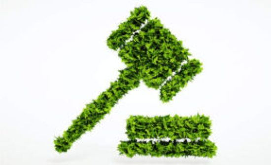 Efficacy of Environment Protection Act, 1986