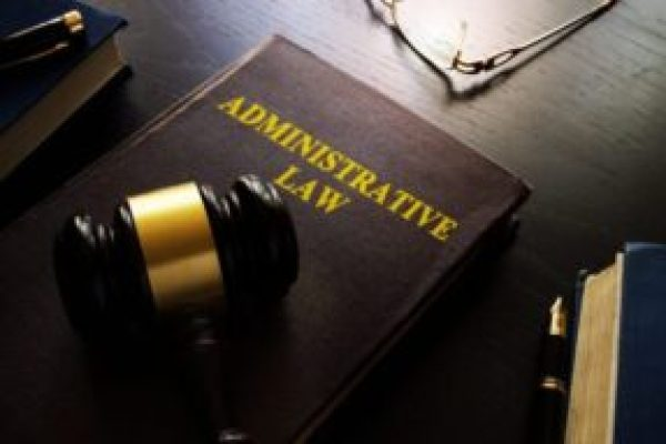 Judicial Review of Administrative Actions by Writs