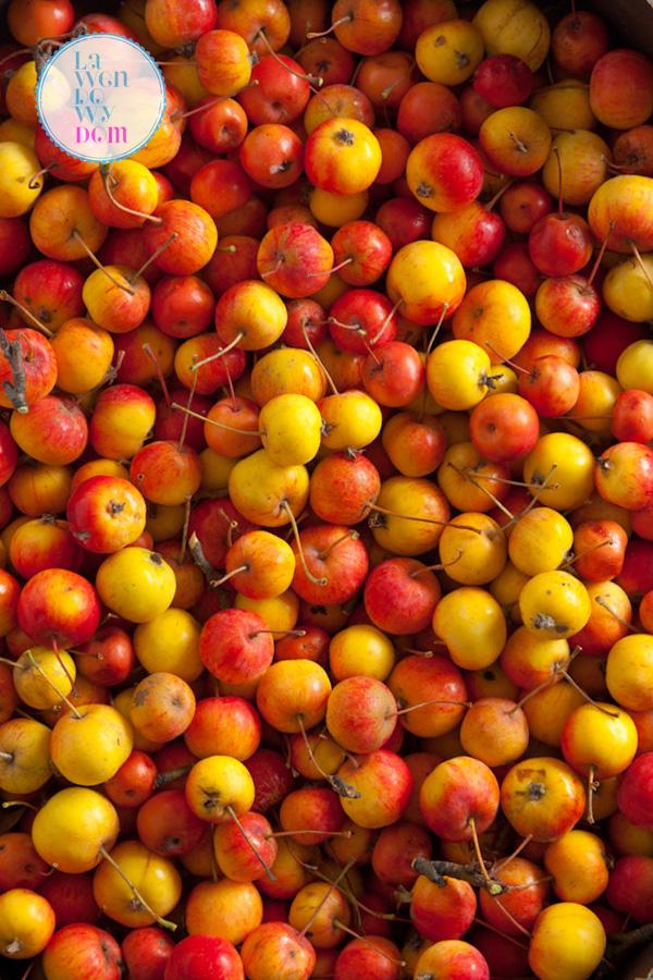 jesienny-wieniec-z-jablek_6