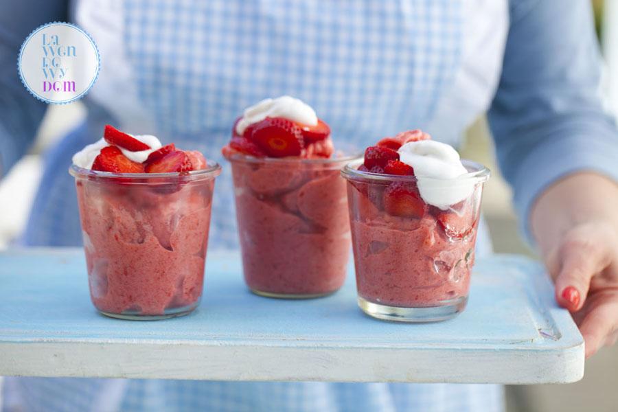 domowe-lody-truskawkowe-bez-cukru-przepis16