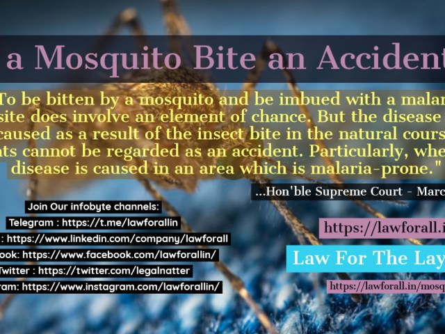 Is a Mosquito Bite an Accident ?